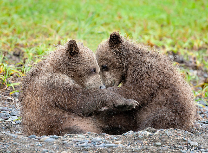 AK_2021; Hug Me