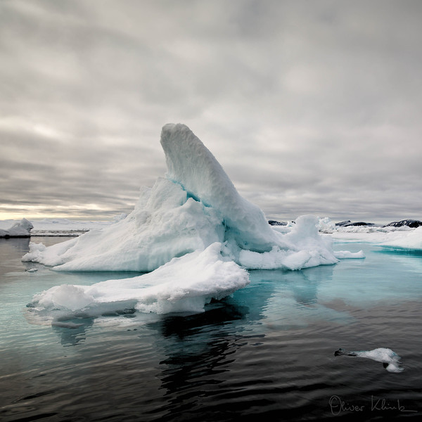 34. Iceberg Lane #2