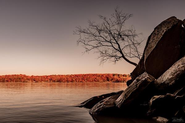 Autumn River Views: