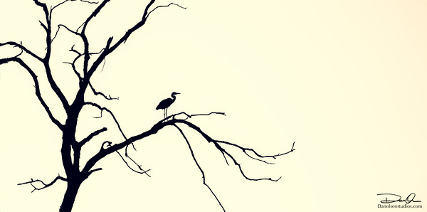 Heron's Rest
