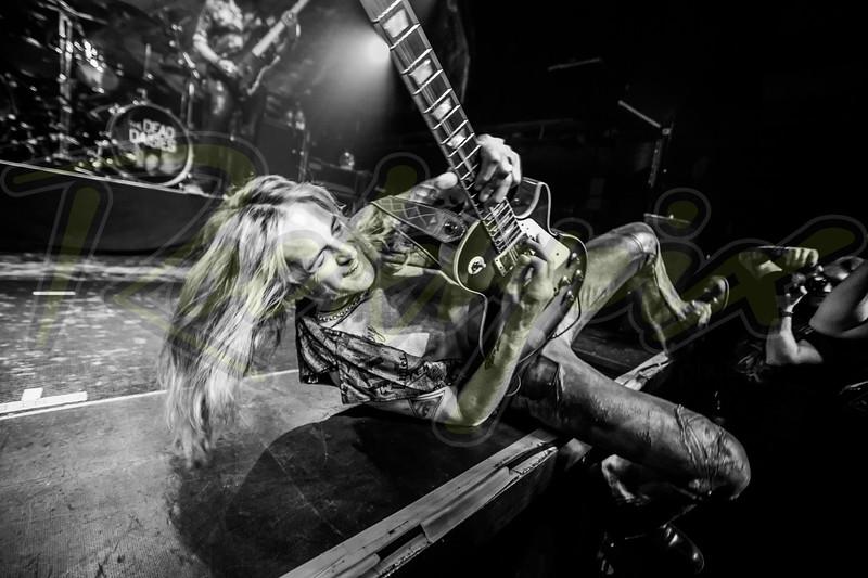 ©Rockrpix - Doug Aldrich