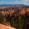 1085 - Bryce Canyon National Park, Utah.