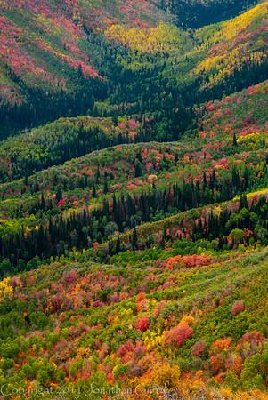 1064 - Painted fall mountains.  Wasatch Range, Utah.