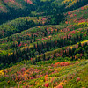 1064 - Painted fall mountains.  Wasatch Range, Utah.