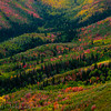1063 - Painted fall mountains.  Wasatch Range, Utah.