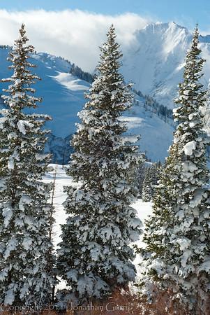 1177 - Mt. Superior, Utah.