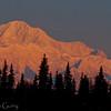 1293 - Denali, Alaska Range, Alaska.