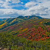 1062 - Painted fall mountains.  Wasatch Range, Utah.