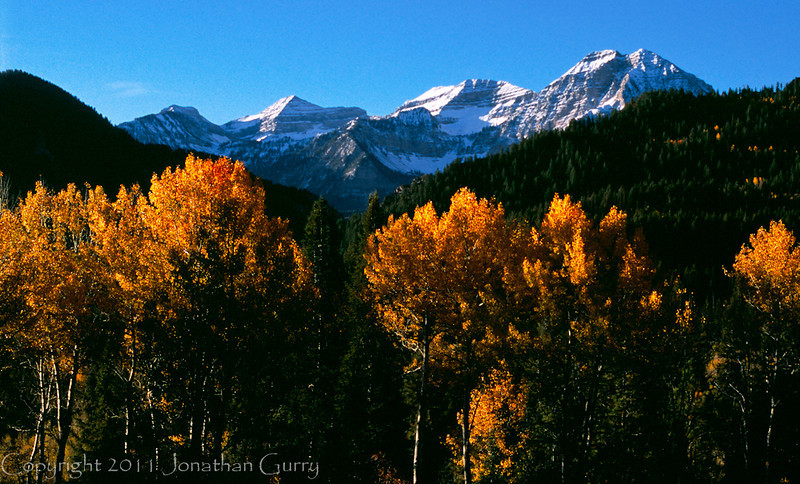 1050 - Mt. Timpanogos in fall, Wasatch Mountains, Utah.