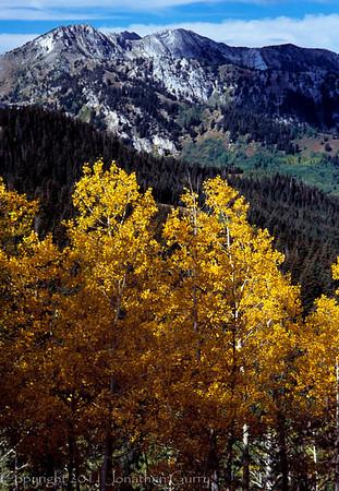 1025 - Mt. Wolverine, Wasatch Mountains, Utah.