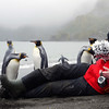 Maurice shoots hungry king penguins on the beach in the rain at Right Whale Bay, South Georgia