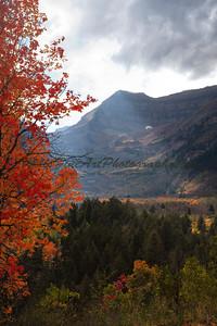 Sunbeam and Maple, Sundance Utah