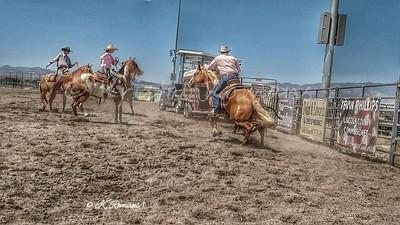 LC Fair & Rodeo 2016