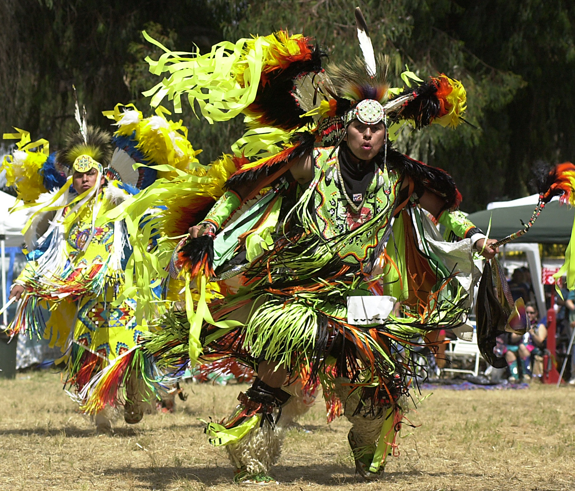 Stanford Powwow, Men's Fancy Dance Competition
