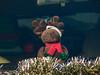 2012 Dunlap Christmas Parade-1340