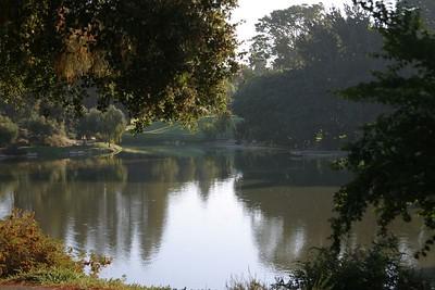 Davis stream opens into a pond