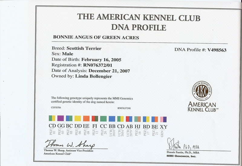 Angus's DNA Profile<br /> <br /> Green Acres Garden - Linda's Bonnie Scots - Princeton Texas