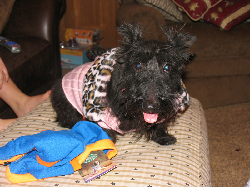 Suzie, retired and crossed over the rainbow bridge, she was a real sweetheart. Never met any person she didn't like!