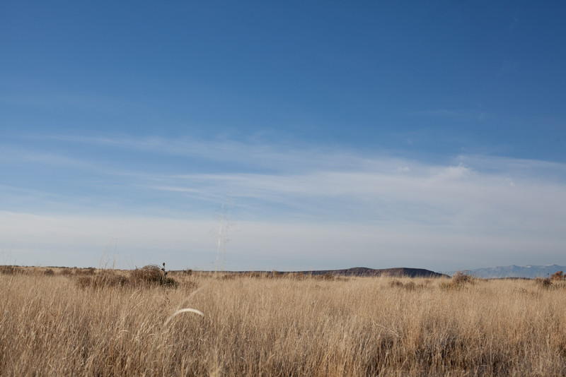 Sevilleta National Wildlife Refuge