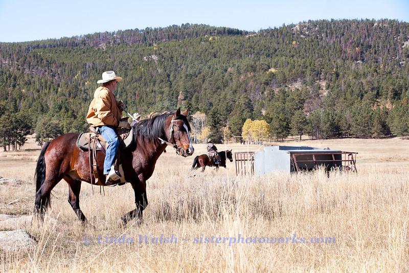 Fall Roundup, Trevartan 2011-2910