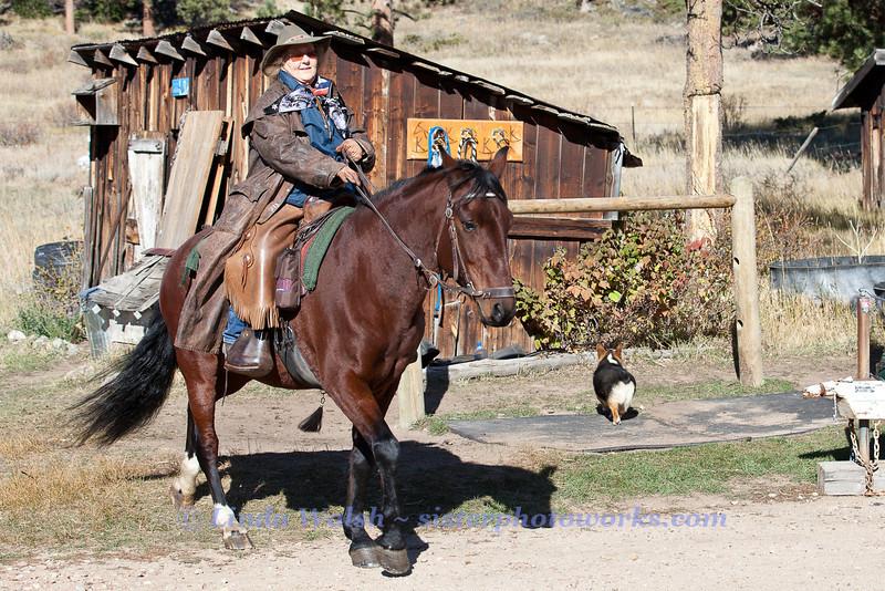 Fall Roundup, Trevartan 2011-2833