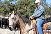 Fall Roundup, Trevartan 2011-2939