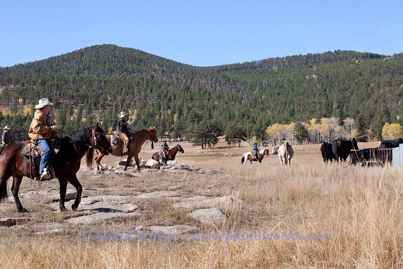 Fall Roundup, Trevartan 2011-2908