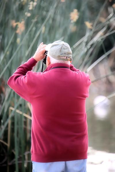 New Year's Eve Bird Watcher