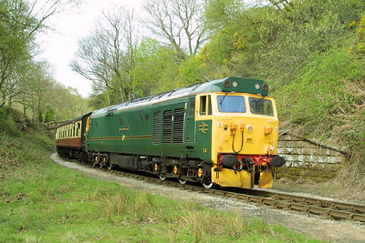 50007 brings up the rear of the 1220 Pickering-Grosmont at Beck Hole on 23/04/2004.