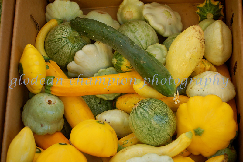 summer squash boxed in