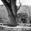 Lingshui village and jieshi village