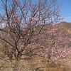 visit  lingshui village in  beijing