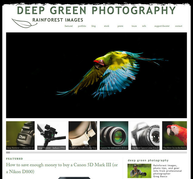 www.deepgreenphotography.com<br /> <br /> Nature Photography Blog of Greg Basco, professional Costa Rica nature photographer and owner of Deep Green Photography and Foto Verde Tours.
