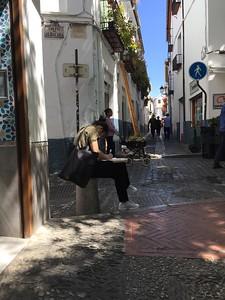 Lions Roam Spain- Granada