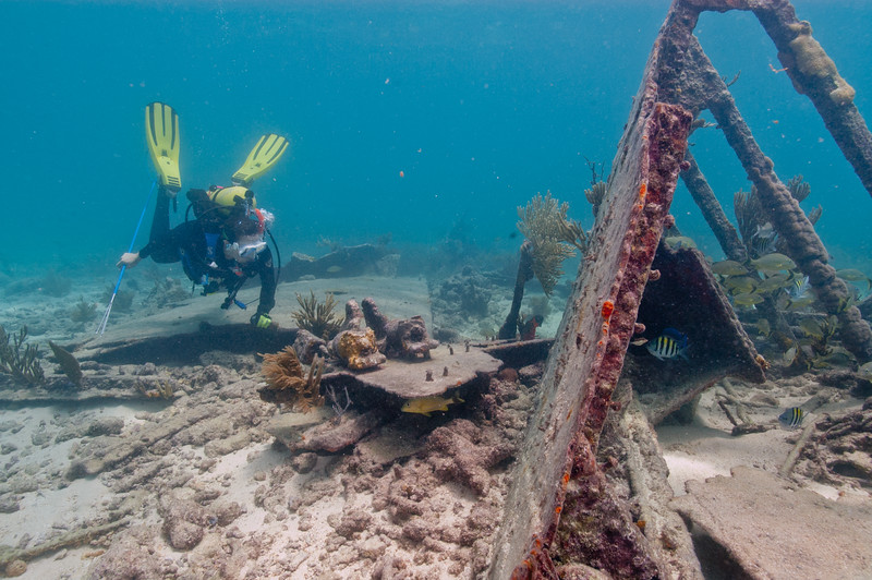 An NPS diver scours the Mandalay wreck in Biscayne for invasive lionfish
