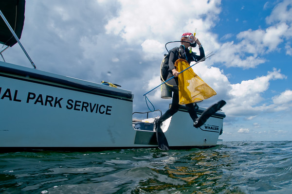 An NPS diver leaps off the boat for a dive to remove invasive lionfish in Biscyane National Park