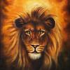 Lion Close Up Portrait, Lion Head With Golden Mane, Beautiful De