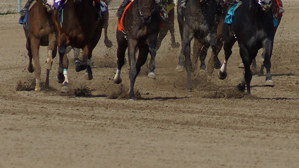 Indiana Downs - Shelbyville Indiana