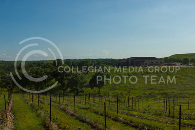 Liquid Art Winery is a local vineyard with ten acres of land and thier own winery on site. (Justin Wright | The Collegian)
