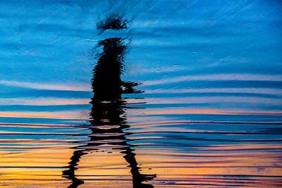 Liquid Life on the Beach
