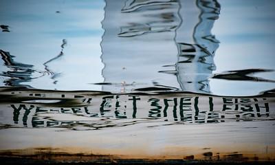 Wellfleet Shellfish 3