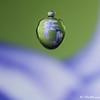 IMG_8661_20140215_Canon-EOS-50D