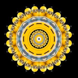 _1596c2=k1_010115_182713_5DM3L Kaleidoscope