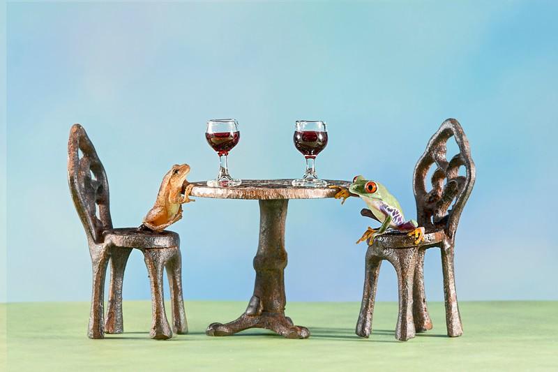 __9935b_071913_225339_5DM3L two frogs wine