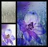 __7375c_042916_090818_7DM2 window droplets added blend mode