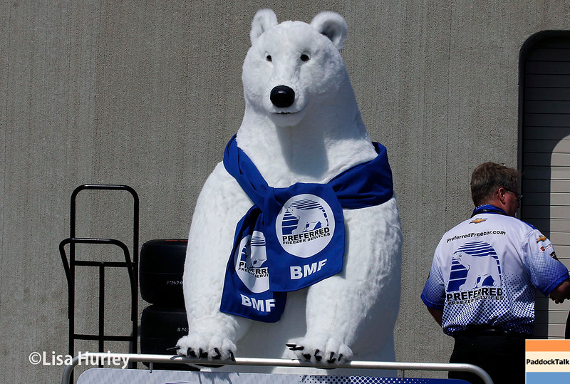 May 17: Team mascot for J.R. Hildebrand during qualifications for the Indianapolis 500.