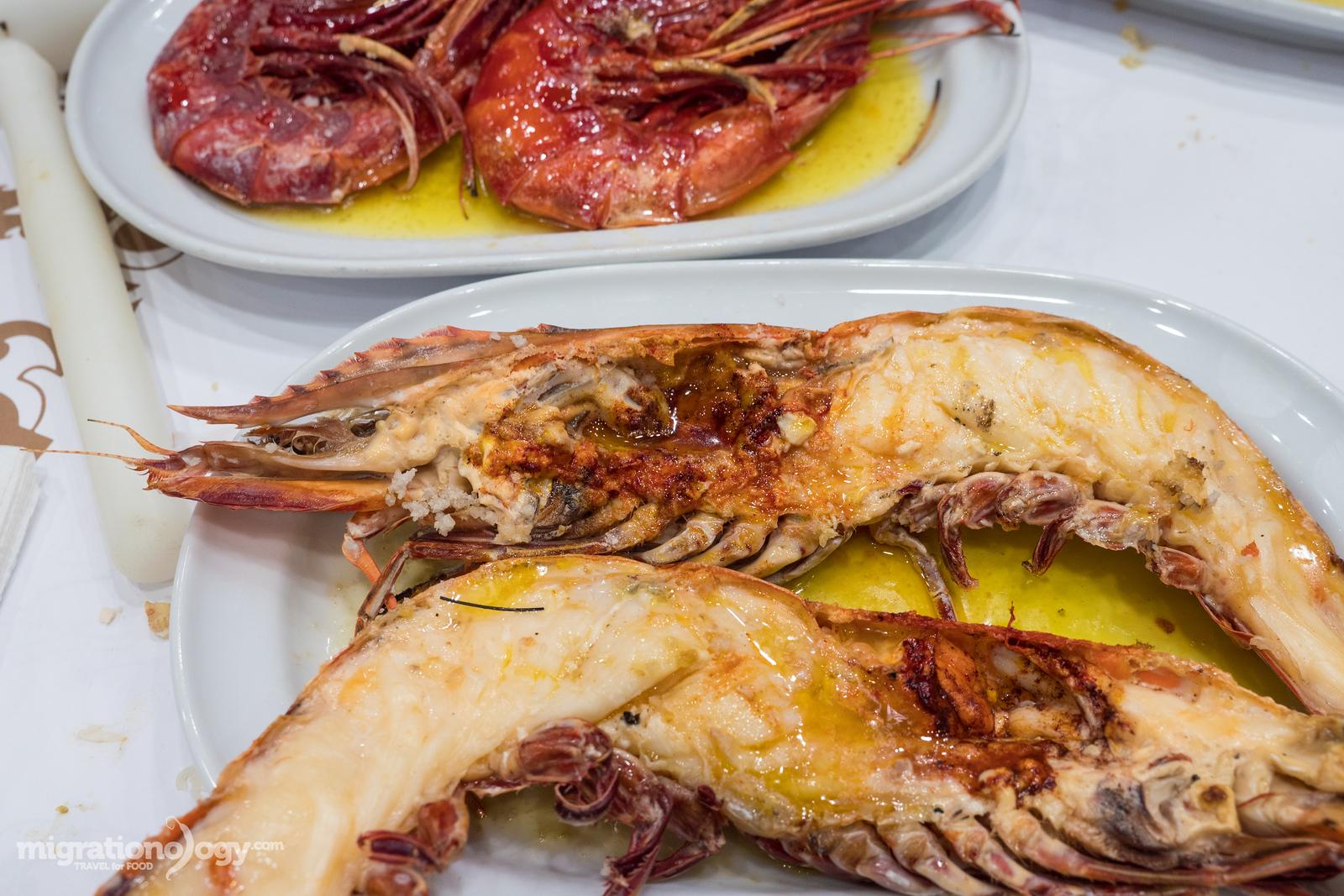 giant tiger shrimp