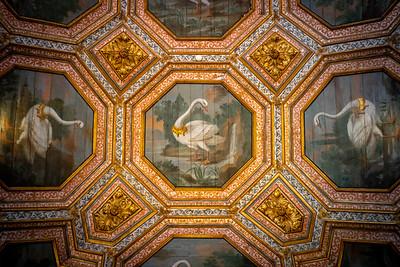 Swan Ceiling