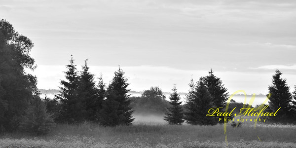 Fog in early morning.