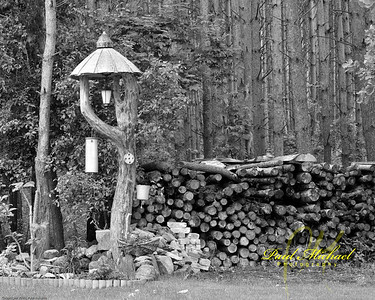 Wood pile for heat in winter.